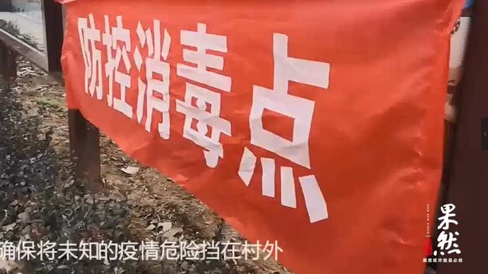果然视频 要滴水不漏,实拍青岛郊区村口防疫消毒检查