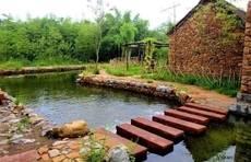 山东34个全国重点旅游村,恁假期来看看?