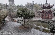 情报站|飘洒的雪随风落!烟台罘区芝毓璜顶公园雪花飞舞披银装