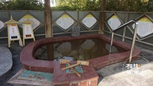 山东温泉测评 | 冬日养生汤 泡池里有啥奥秘?