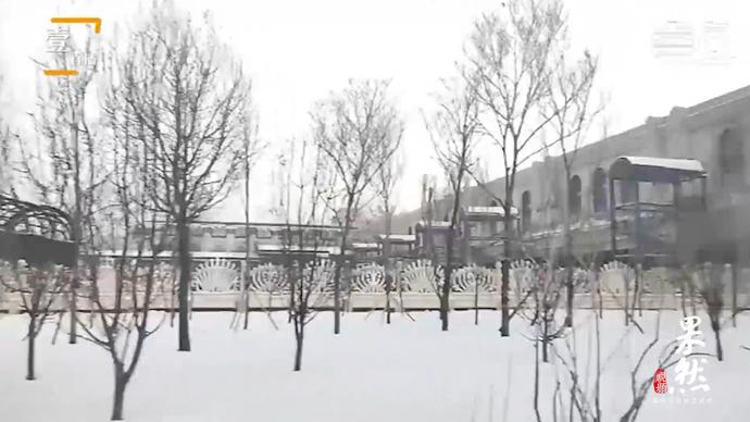 果然视频|极至中国:记者到达哈尔滨站,带你领略雪国风光