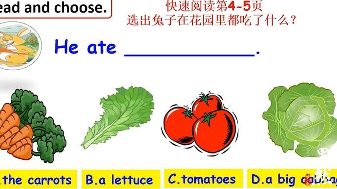 壹点网课 小学英语绘本,田盼盼跟你讲述动物和蔬菜的故事