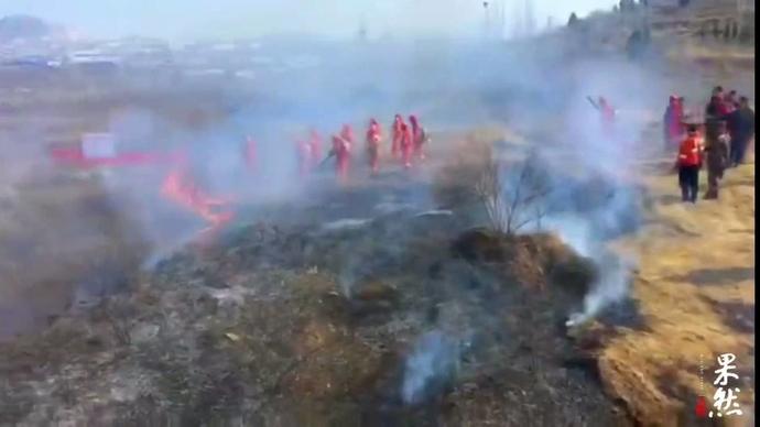 果然视频|应对春季森林防火,济南市中区举行实战演练