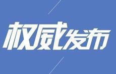 """山东:重要平台叠加发力,""""三区""""当好""""先遣队"""""""