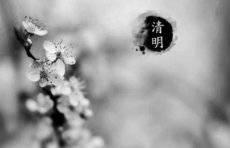 热闻区 冷空气来袭w88官方网页版最低温跌至0℃!济南最美油菜花田开了