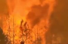 为何近期森林火灾频繁发生?森林火灾扑救为何难度如此之大?