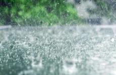 本周济宁多雷雨或阵雨 无明显高温