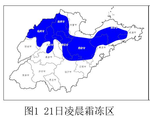 低温+霜冻!山东未来三天地表最低温-1℃!