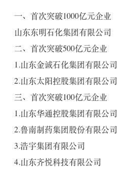2018年度山东省新跨越民营企业名单公示 山东华通控股集团等7家入选-山东华通金融